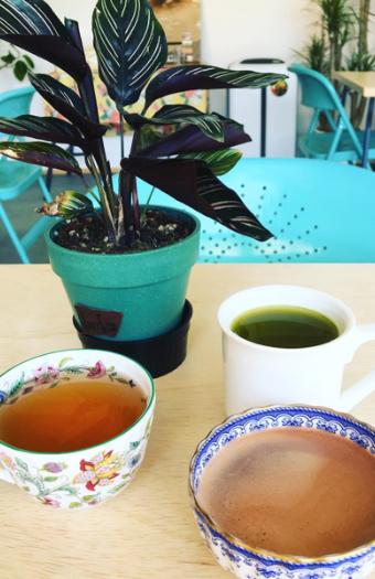 紅茶、ココア、国産有機茶葉100%使用カテキン茶